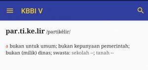 definisi partikelir